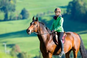 horserider_198258818