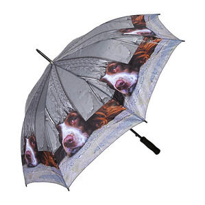 Country Matters I Spy Spaniel - Umbrella