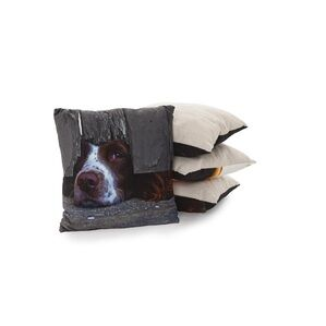 Country Matters Soft touch cushion - I Spy Spaniel
