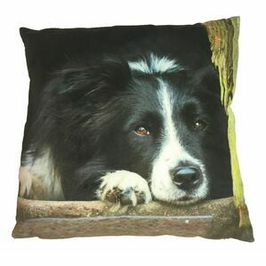 Country Matters Border Collie Cushion