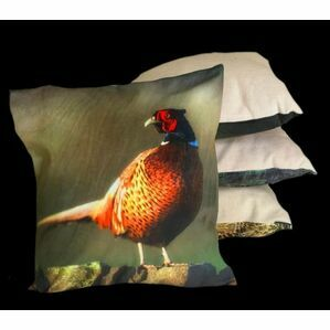 Pheasant On Wall Cushion Country Matters