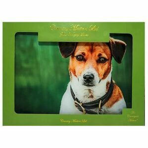 Amber Jack Russell Glass Worktop Saver Country Matters